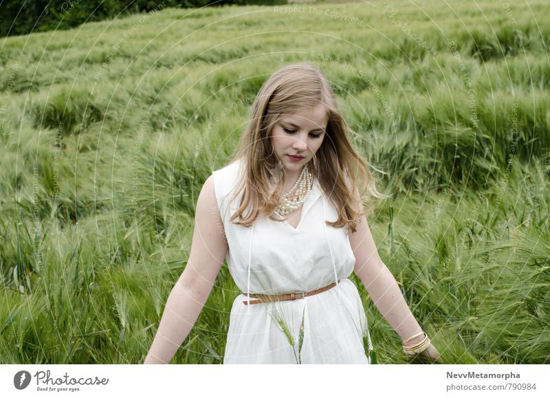 wandering the fields of regret Human being Feminine Young woman Youth (Young adults) 1 18 - 30 years Adults Nature Foliage plant Agricultural crop Field Dress
