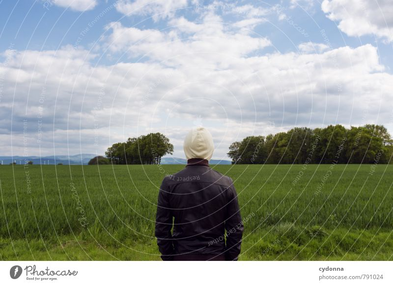 clear one's head Human being Young man Youth (Young adults) Life 18 - 30 years Adults Environment Nature Landscape Sky Summer Beautiful weather Tree Grass Field