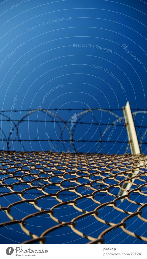 Hurdles run in real life Fence Barbed wire Dangerous Infinity Captured Steel Wire Concentrate Winter Extreme sports intricately neat Sky Threat Freedom