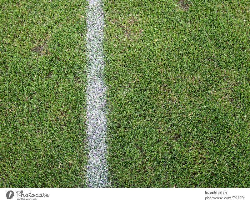A line marks the edge of the playing field Baseline Grass Green Line Green space Stripe Field Sports Center line Grass surface Sporting grounds Football pitch