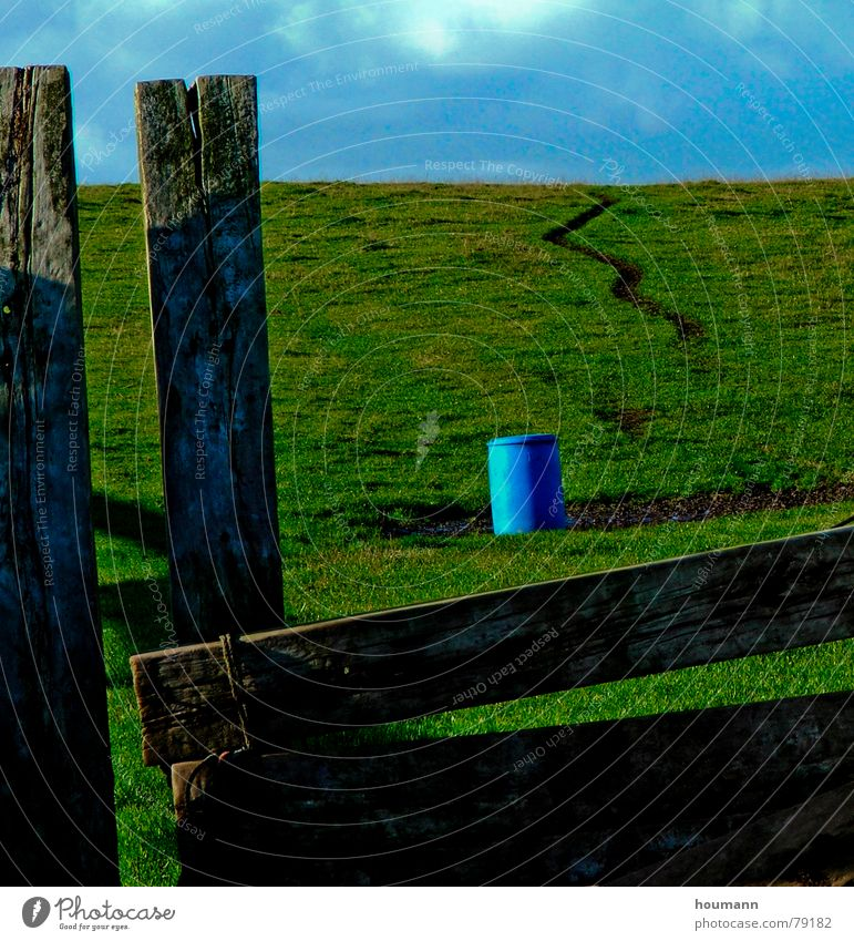 blue green blues Keg Clouds Grass Green Loneliness plank Blue Wooden board Oil barrel