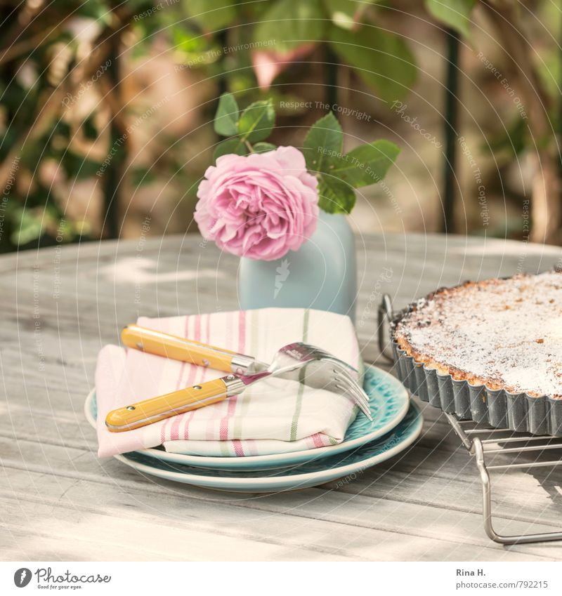 Torta di riso II Cake Dessert Italian Food Crockery Plate Fork Lifestyle Rose Garden Blossoming Authentic Delicious Sweet Relaxation To enjoy food Vase Napkin