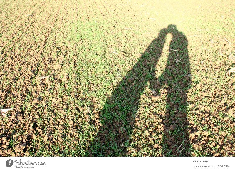 outdoor love Joy Happy Human being Woman Adults Man Friendship Couple Partner Hand Autumn Field Kissing Love Together Soft Brown Emotions Romance Timidity