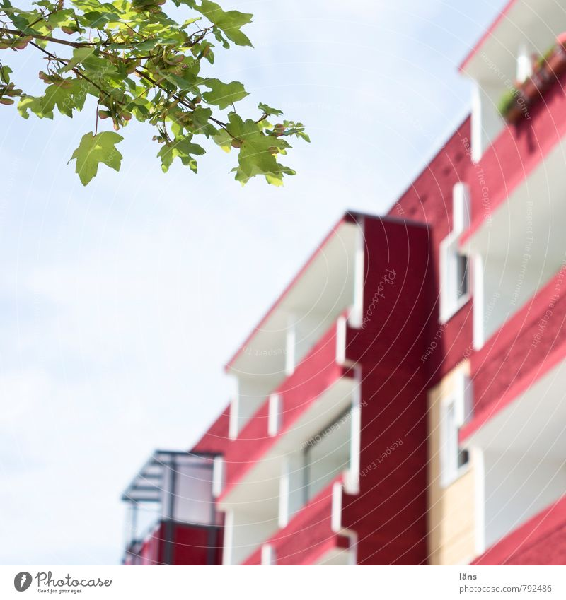 Sky City Tree Red Leaf House (Residential Structure) Architecture Building Together Flat (apartment) Living or residing High-rise Concrete Simple Friendliness