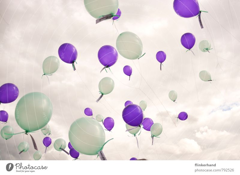 tenderness Feasts & Celebrations Wedding Event Sky Clouds Balloon Flying Dream Happy Above Green Violet Happiness Joie de vivre (Vitality) Freedom