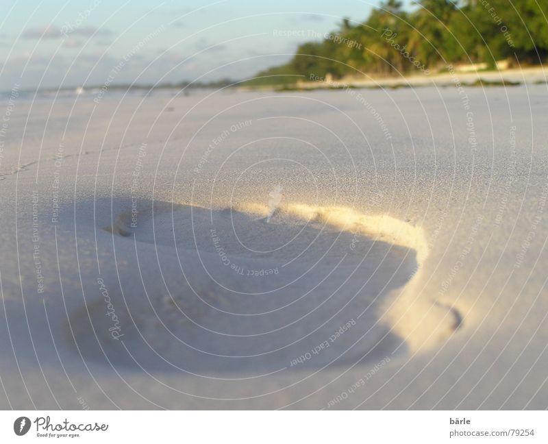 Ocean Summer Beach Vacation & Travel Feet Sand Coast Going Floor covering Africa Leisure and hobbies Palm tree Footprint Furrow Tansania Sandy beach