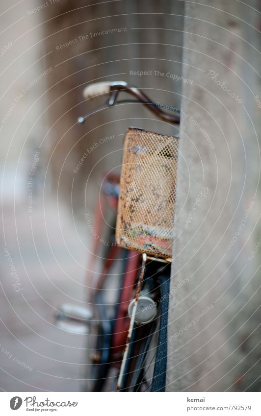 wheel Leisure and hobbies Bicycle bicycle basket Wire basket Basket Bicycle handlebars Old Dirty Rust Concrete Ajar Colour photo Subdued colour Exterior shot
