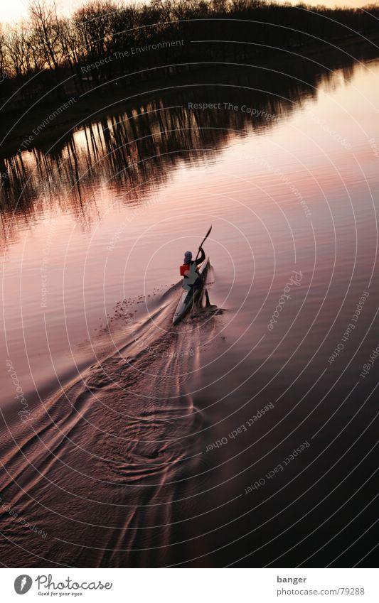 Nature Water Tree Sun Winter Sports Playing Watercraft Power Speed Drops of water Bridge River Violet Canoe