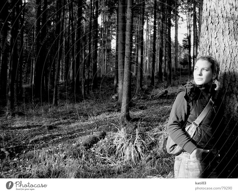 Look... a sun! Lean Forest Sun Tree Plant Autumn Cold Loneliness Longing Dream Stand Light Far-off places Young woman Black & white photo Bright Lighting