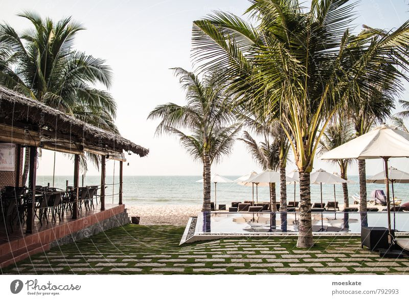 Mui Ne Vietnam Water Swimming & Bathing Ocean South China Sea mui ne Swimming pool Infinity Infinity Pool Horizon Palm tree Hotel Vacation & Travel Beach