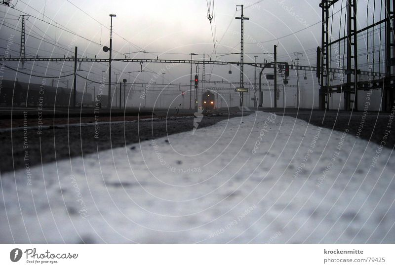 Winter Cold Wait Fog Transport Railroad Electricity Driving Switzerland Railroad tracks Station Train station Traffic light Come Platform Engines