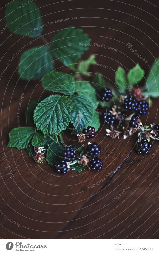 small wild Food Fruit Blackberry Nutrition Organic produce Vegetarian diet Plant Leaf Agricultural crop Wild plant Esthetic Fresh Healthy Natural Wooden table
