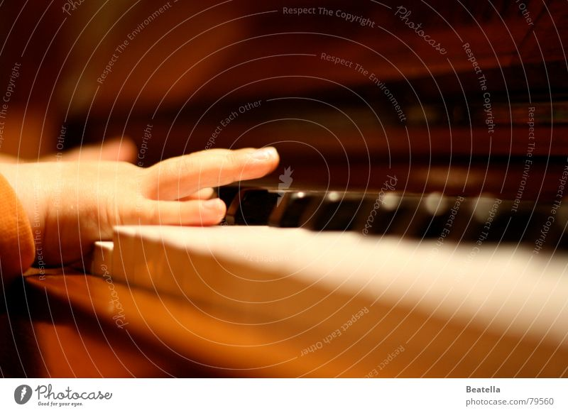 Early practice ... Piano Piano concert Child Hand Practice Sound Concert Music Joy Toddler sonata finger exercise Tone piano player