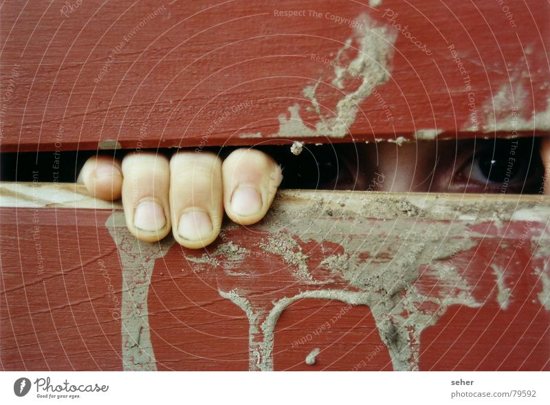see you .. Fingers Slit Wood Captured Red Emotions Hiding place Eyes Dirty Wooden board Fear Observe Looking