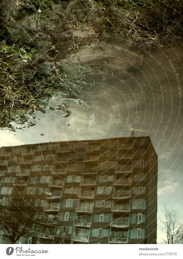 ATLANTIS II Puddle Really Fog Wet Autumn House (Residential Structure) High-rise Building Material Window Live Block Concrete Story Gloomy Dark Passion Mirror