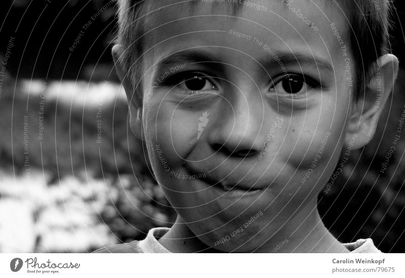 Child Summer Eyes Boy (child) Mouth Nose Sweet Ear Point Student Brash Tilt Schoolchild Impish Jug ears