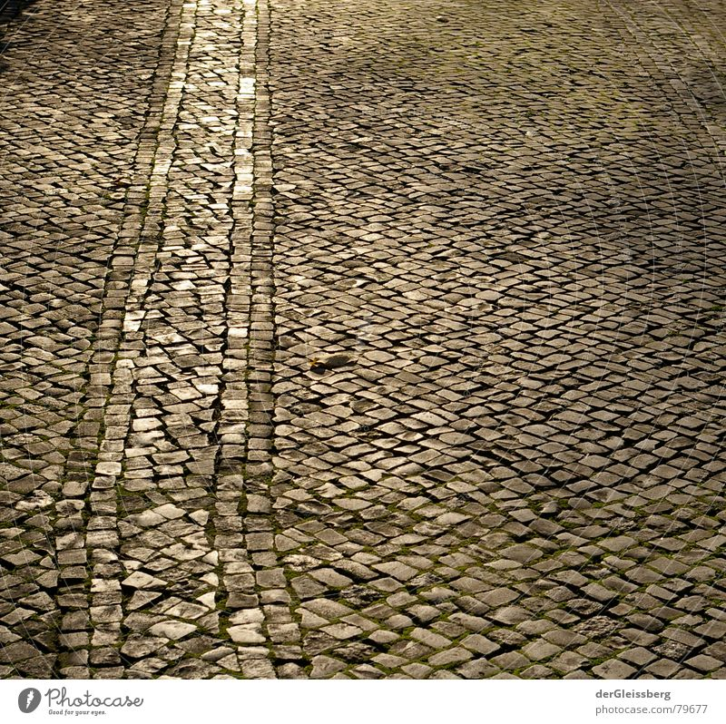 walk the path of the sun Gold Furrow Correct Dependability Cobblestones Illuminate Dark Comforting Cold Tracks Yellow Gray Traffic lane Flashy Town Pavement
