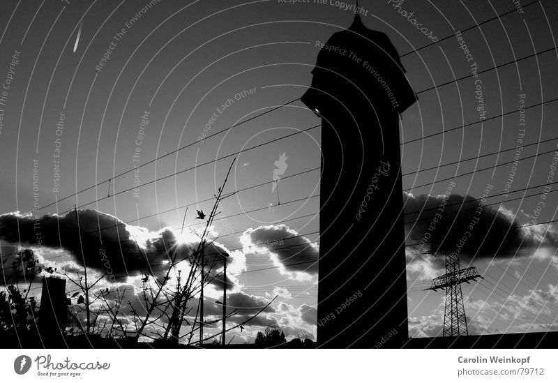 Phallus symbol. Clouds Dramatic Bushes Airplane Vapor trail Light Winter Electricity pylon Society Black Gray Shaft of light Darken Cold Berlin Shadow Building