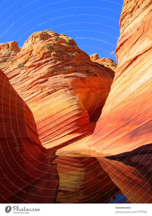 The Wave II Canyon Sandstone Waves Yellow Red Old Paria Stone Minerals Earth USA Orange Marble Structures and shapes Water String millions slot reflection