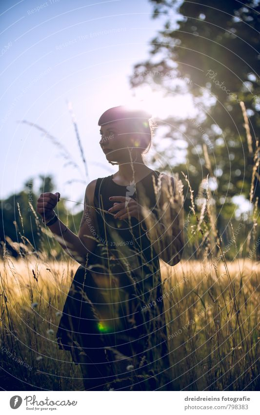 Buzzer Sunset Feminine Young woman Youth (Young adults) Woman Adults 1 Human being Beautiful weather Tree Grass Meadow Dress Stand Dream Happy Natural