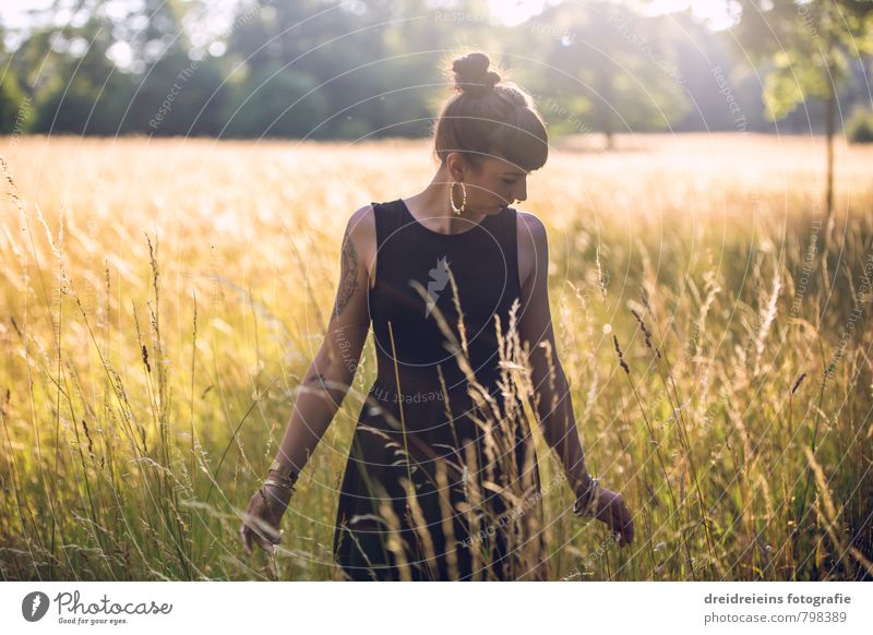 Human being Woman Nature Youth (Young adults) Beautiful Summer Loneliness Young woman Relaxation Joy Adults Emotions Feminine Grass Happy Dream