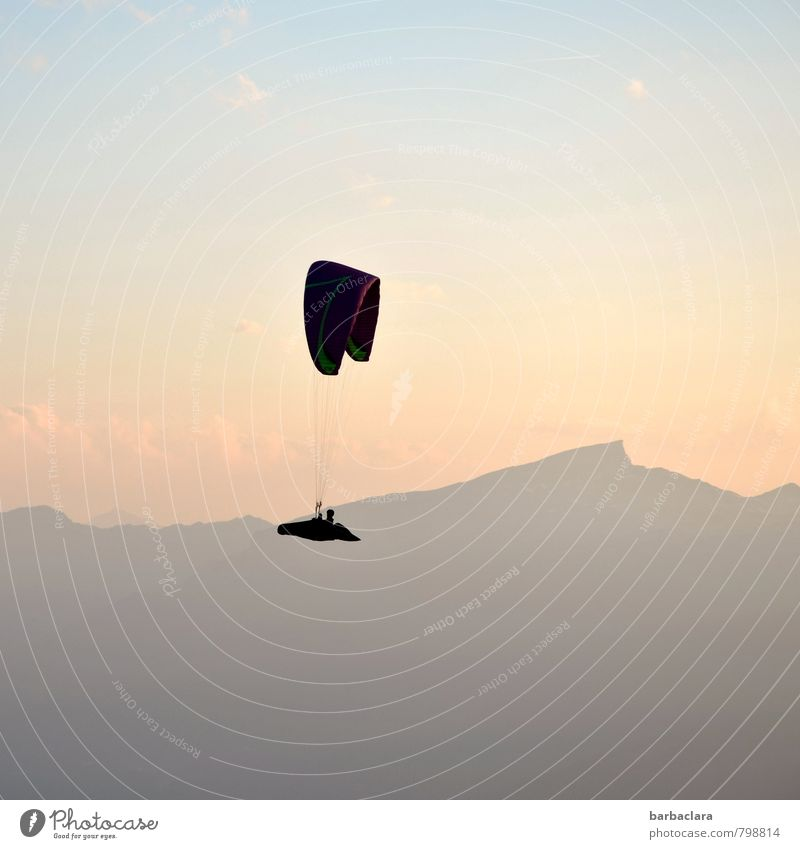 Flying high. Leisure and hobbies Paragliding Human being 1 Air Sky Sun Alps Mountain Nebelhorn Peak Bright Tall Emotions Joy Brave Adventure Experience Freedom