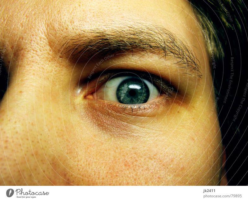 Blue Face Eyes Head Fear Nose Near Panic Eyelash Eyebrow Pupil Iris Pore Eye colour