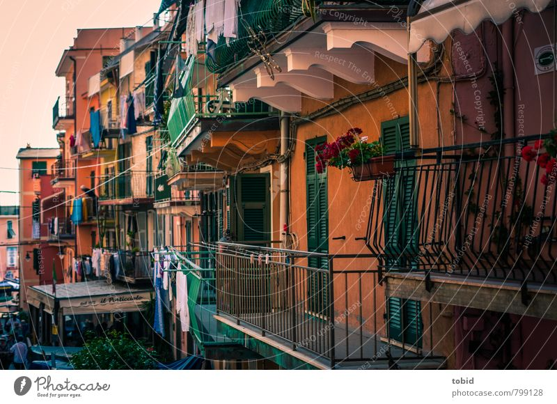Little Cuba Vacation & Travel Sightseeing Summer Living or residing Balcony Housefront Handrail Cinque Terre Italy Village Fishing village Downtown Old town