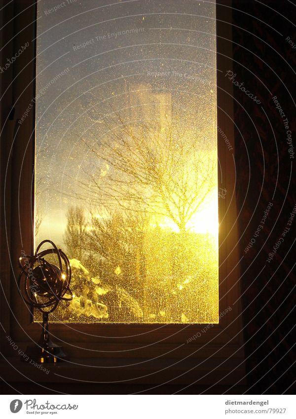 globe with sunset Shutter Globe Venetian blinds Sunset Window Yellow Apocalypse Heavenly Tree Dirty Shop window Splendid Evening Impressive Fantastic