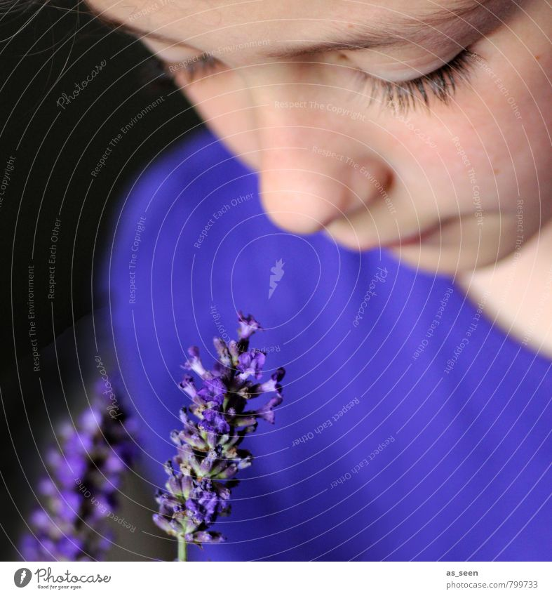 Child Blue Beautiful Colour Summer Flower Calm Girl Face Eyes Blossom Natural Garden Contentment Infancy To enjoy