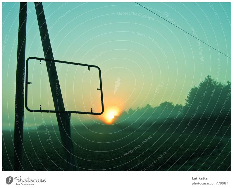 morning sunshine Yellow Fog Sunrise Turquoise Dew Electricity pylon Summer Field Moody Tree Sunset Green Celestial bodies and the universe Evening
