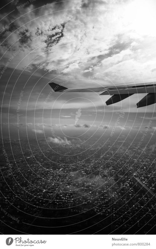 On the way, Transport Aviation Airplane Passenger plane Airplane landing Airplane takeoff In the plane View from the airplane Threat Dark Elegant Infinity Tall