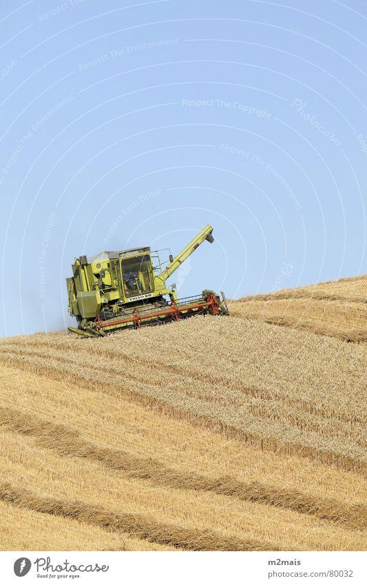 colheitadeira Countries Gastronomy campo trigo plantação trator fazenda agricultura rural area country