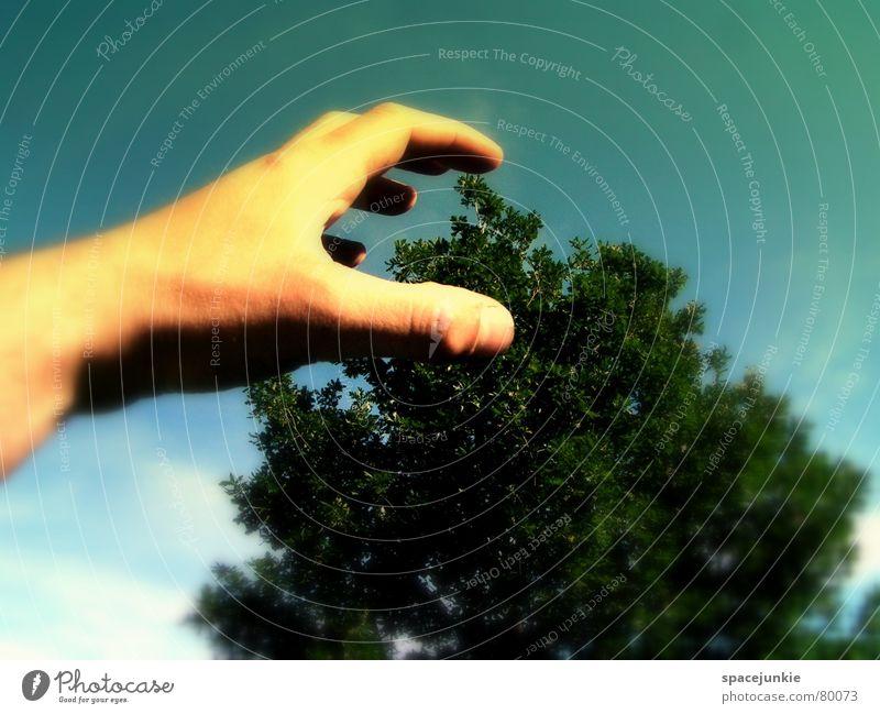 Sky Hand Tree Joy Dream Dangerous Threat Paw Surrealism Attack