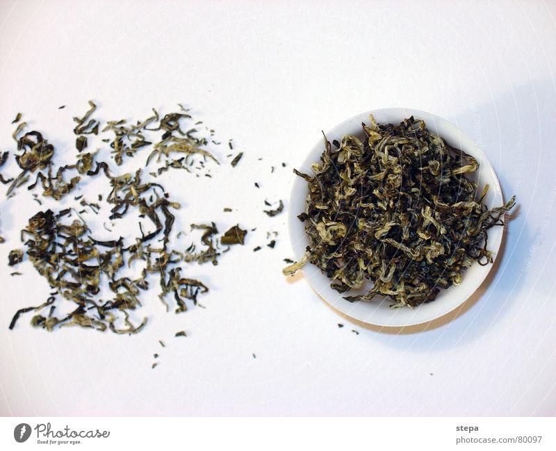 White Tea China Tea plants Chinese Tea caddy Tea culture