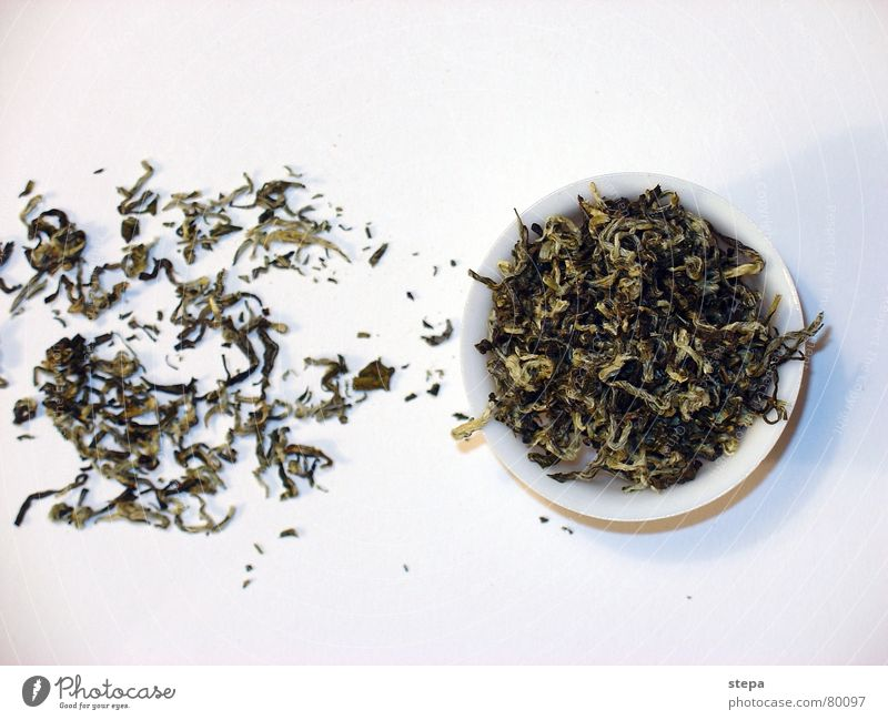 white tea Tea culture Tea plants Tea caddy White Chinese China tea tree chinese tea china tea wise rich of the middle