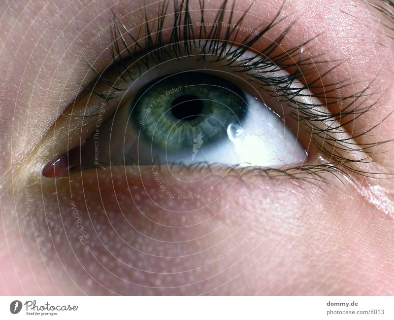 Woman Eyes Style Eyelash Lens Iris