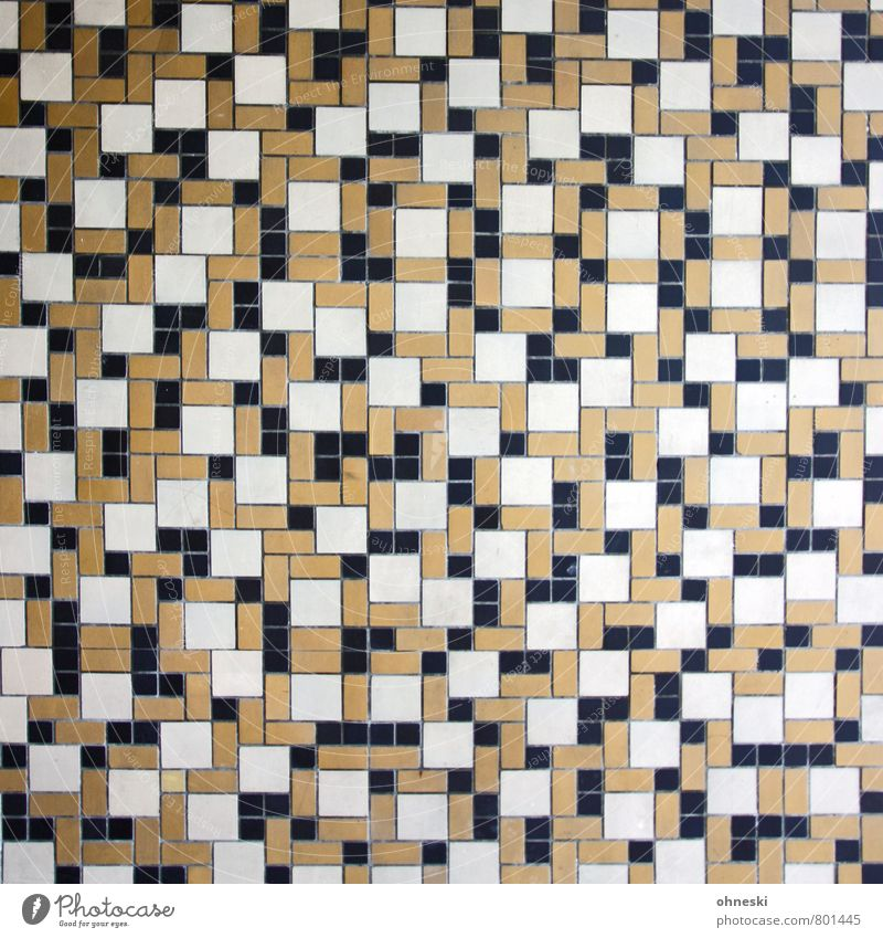 tactic House (Residential Structure) Wall (barrier) Wall (building) Facade Mosaic Tile Line Network Wild Brown Colour photo Subdued colour Exterior shot