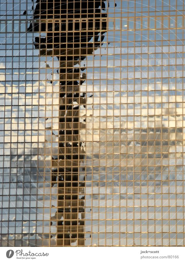 City Colour Clouds Environment Line Above Horizon Illuminate Modern Glass High-rise Tall Fantastic Hope Capital city Landmark
