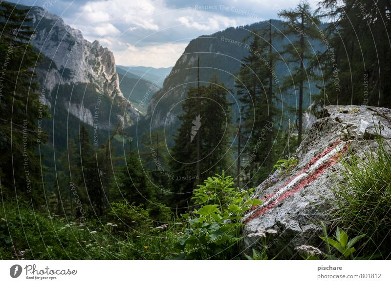 Nature Vacation & Travel Beautiful Landscape Mountain Natural Leisure and hobbies Tourism Hiking Joie de vivre (Vitality) Adventure Kitsch Austria Home country