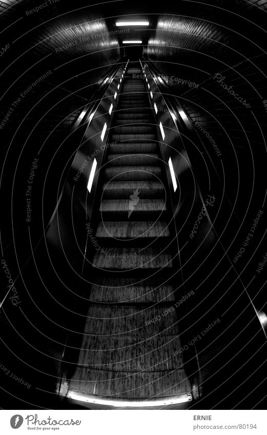 up and away Escalator Far-off places Undulating Rubber Lamp Arrangement Black Dark Cologne Near Fisheye Flashy Station Go up Train station Handrail String Light
