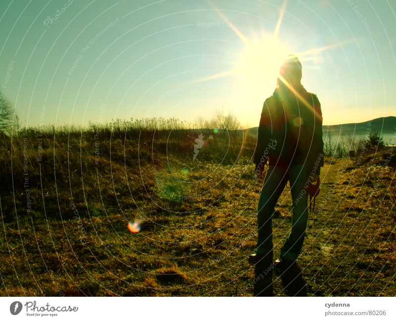 On Christmas morning Action Meadow Sun Woman Back-light Dazzle Winter Cold Moody Green Green space silouette Nature To go for a walk Lighting Idyll Sky