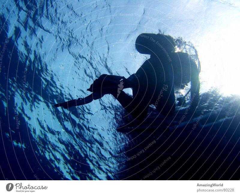 surface Aquatics Infinity Diver Ocean Egypt Surface Return Water Underwater photo Blue Deep Freedom