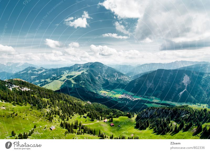 Bayrischzell Vacation & Travel Tourism Trip Summer Summer vacation Mountain Climbing Mountaineering Sky Clouds Beautiful weather Meadow Forest Alps Peak Blue