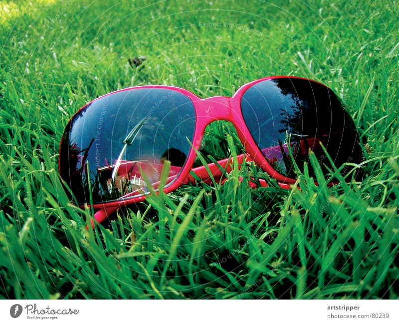 Sun Green Red Summer Vacation & Travel Colour Relaxation Meadow Grass Garden Park Glass Fly Lawn Eyeglasses Leisure and hobbies
