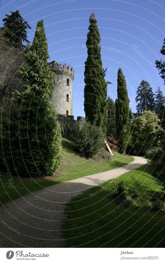 Sky Tree Green Blue Meadow Grass Garden Stone Lanes & trails Park Tower Ireland Dublin