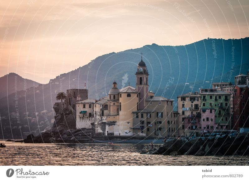 Camogli Vacation & Travel Tourism Human being Summer Beautiful weather Forest Hill Rock Peak Waves Coast Beach Bay Italy Liguria Village Port City Old town