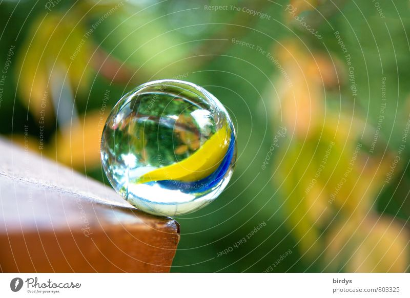 Marble in danger Glass ball Rotate Glittering Esthetic Friendliness Positive Round Multicoloured Beautiful Hope Contentment Gravity Risk of collapse Edge Tilt