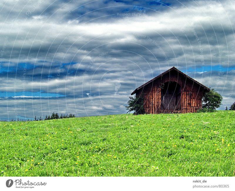 Almöhi´s Garage Wooden hut Alpine hut Alpine pasture Clouds Dark Green Juicy Allgäu Rieden Alpöhi Safe haven Cattle Pasture Accommodation Mountain meadow Grass