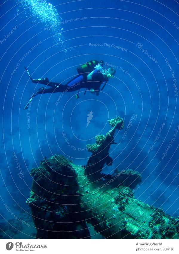 Water Ocean Blue Freedom Dive Infinity Underwater photo Past Historic Deep Aquatics Diver Egypt Sports Wreck